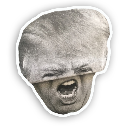 Trump Folds messages sticker-8