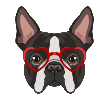 Animals Wearing Glasses messages sticker-8