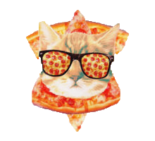 Animals Wearing Glasses messages sticker-11