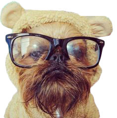 Animals Wearing Glasses messages sticker-3