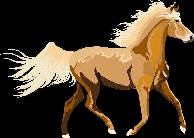 Realistic Horse Art - Horses, Arabian, Appaloosa messages sticker-6