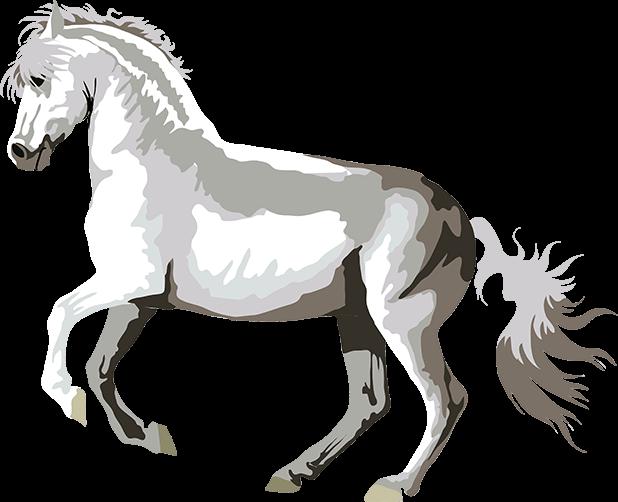 Realistic Horse Art - Horses, Arabian, Appaloosa messages sticker-1