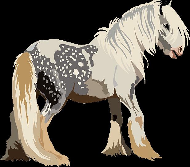 Realistic Horse Art - Horses, Arabian, Appaloosa messages sticker-4