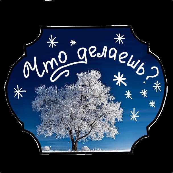 Winter Stickers messages sticker-0