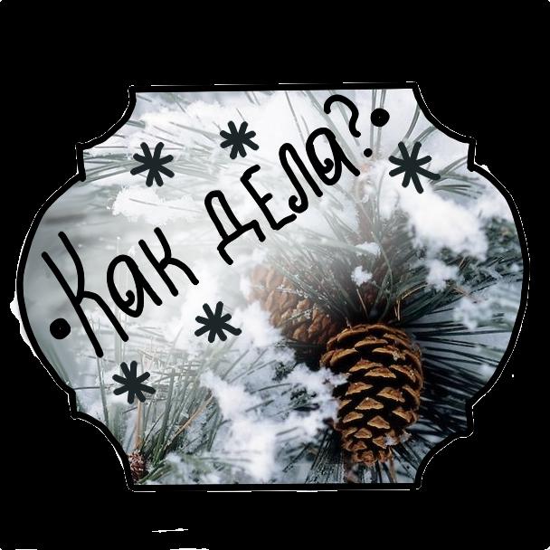 Winter Stickers messages sticker-10