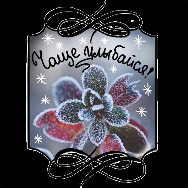 Winter Stickers messages sticker-1