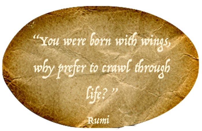 Best Rumi Quotes messages sticker-11