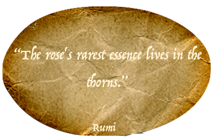 Best Rumi Quotes messages sticker-4