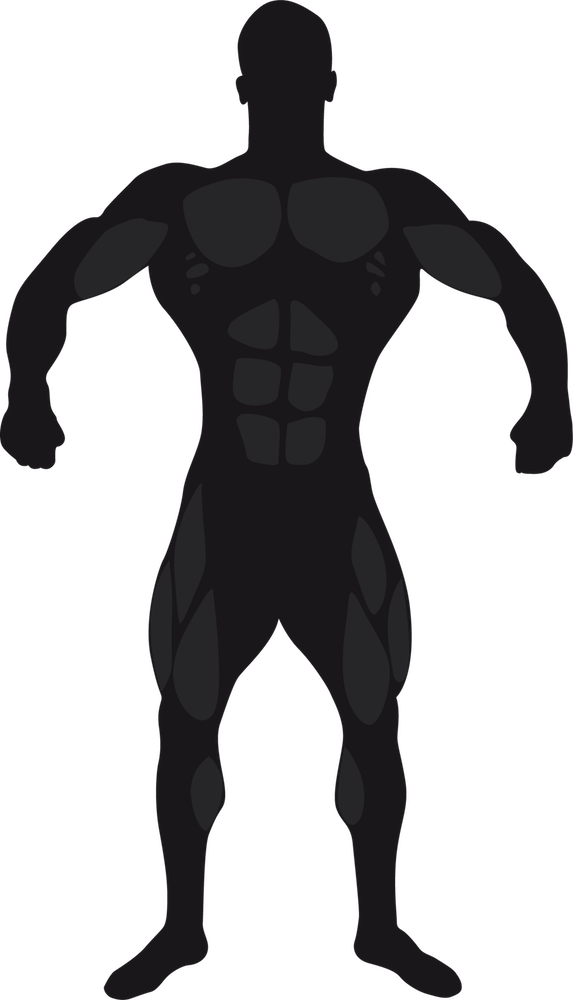 Bodybuilding Stickers messages sticker-7