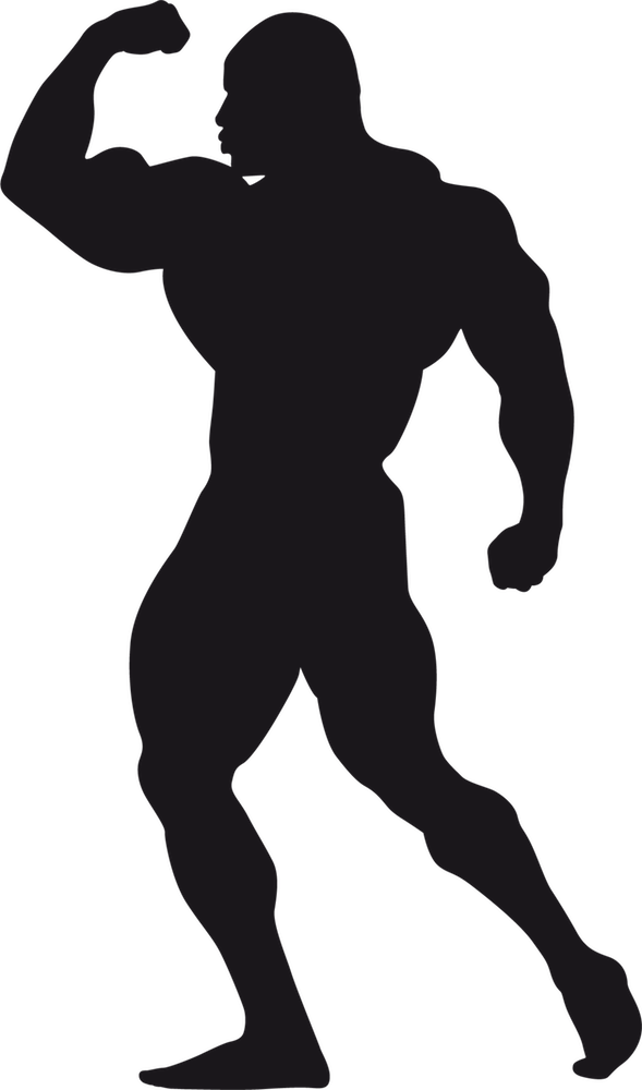 Bodybuilding Stickers messages sticker-10
