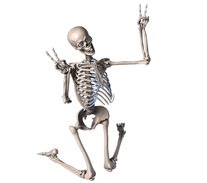 Skelly Stickers: Skulls and Skeletons messages sticker-9