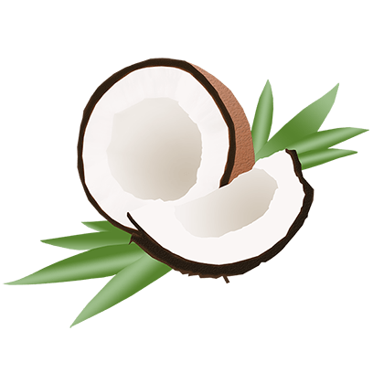 Lizzo: Coconut Oil Sticker Pack messages sticker-11