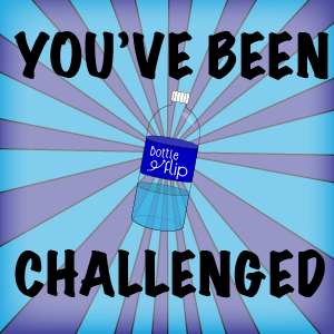 Bottle Flip Challenge 2016 messages sticker-6