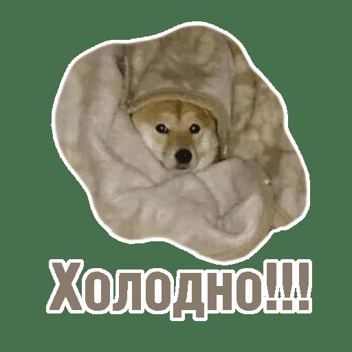Комичные животные messages sticker-6