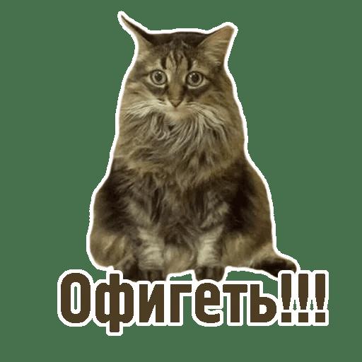 Комичные животные messages sticker-9