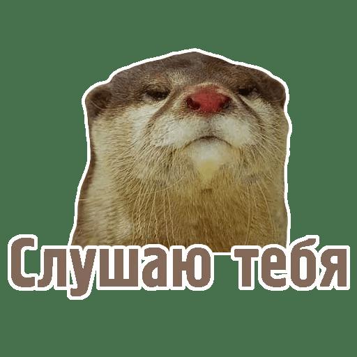 Комичные животные messages sticker-8
