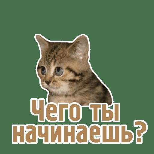 Комичные животные messages sticker-3