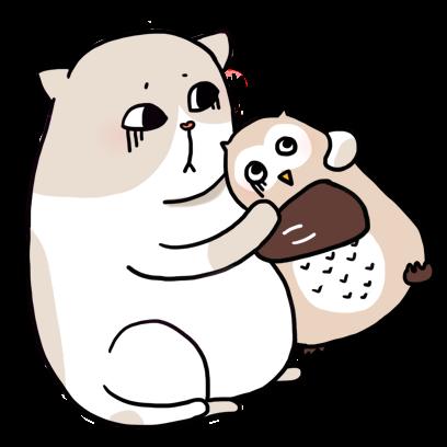 Cat Cute Story messages sticker-8