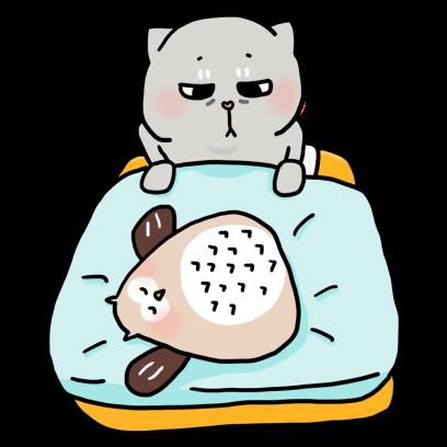 Cat Cute Story messages sticker-10