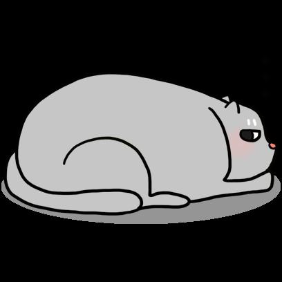 Cat Cute Story messages sticker-1