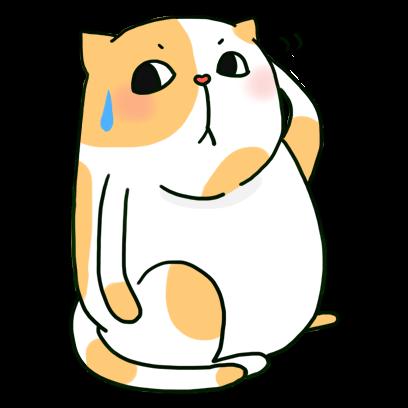 Cat Cute Story messages sticker-3