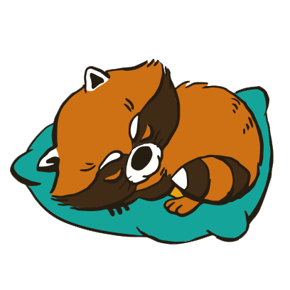 Crazy Raccoon Pet Stickers messages sticker-4