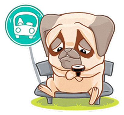 Crazy Pug - Cute dog stickers for iMessage messages sticker-5