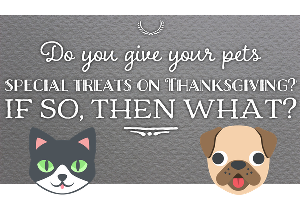 GladLibs: Thanksgiving Prompts messages sticker-6