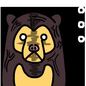 """Nationwide""""Kuma-chan""""dedicated sticker! messages sticker-5"""