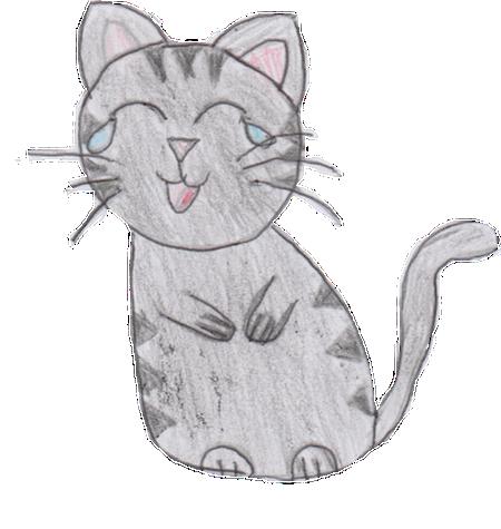 Sock Cat Stickers messages sticker-6
