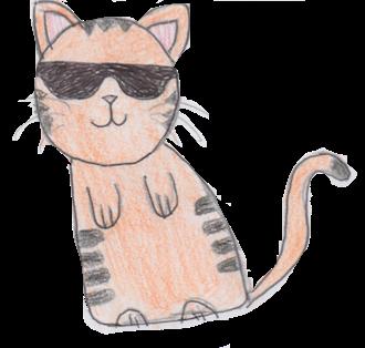Sock Cat Stickers messages sticker-3