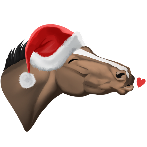 Star Stable Christmas Stickers messages sticker-4