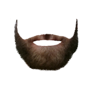 Beardify messages sticker-8