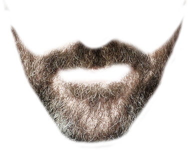 Beardify messages sticker-1