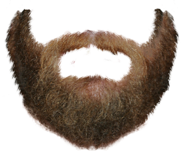 Beardify messages sticker-6
