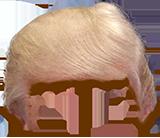 Trump Stamp messages sticker-1