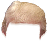 Trump Stamp messages sticker-7