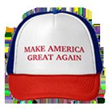 Trump Stamp messages sticker-6