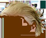 Trump Stamp messages sticker-8
