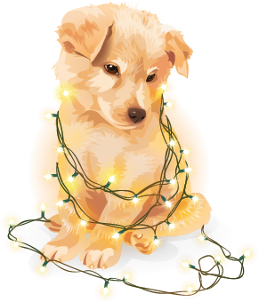 Stardoll Christmas Stickers messages sticker-4