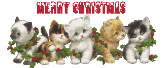 Merry Christmas & Happy New Year Stickers 2016 messages sticker-10