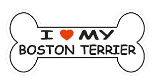 Boston Terrier Stickers messages sticker-11