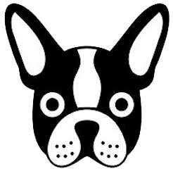 Boston Terrier Stickers messages sticker-1