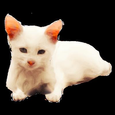 Cat's messages sticker-3