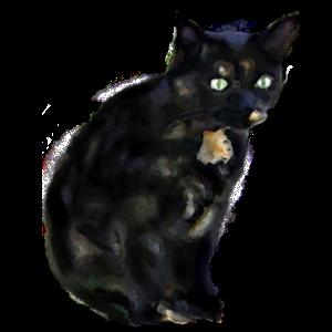 Cat's messages sticker-0