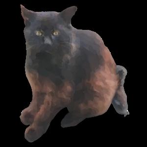 Cat's messages sticker-2
