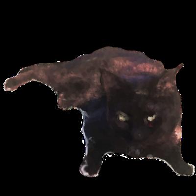 Cat's messages sticker-1