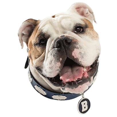 Butler University Stickers messages sticker-2