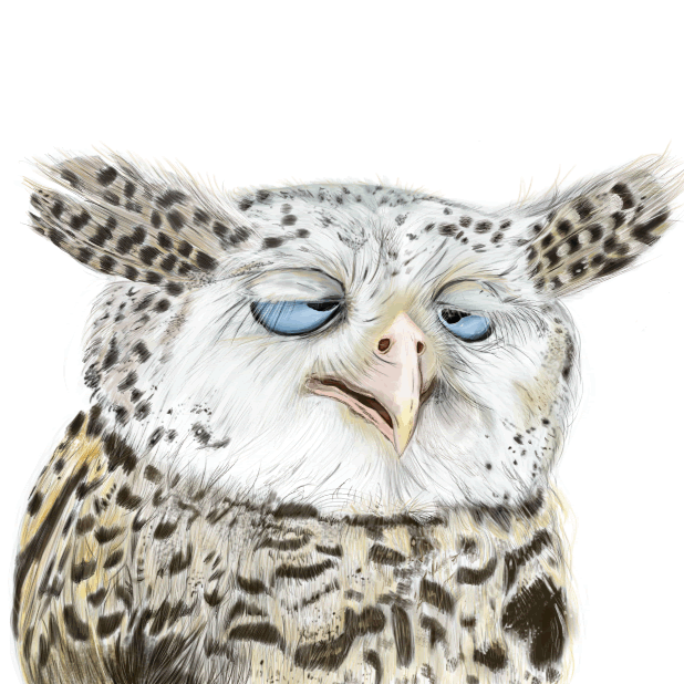 Owl - Daily Moods messages sticker-0