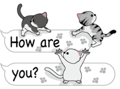Cat Cat Cat English Version Stickers Pack messages sticker-0
